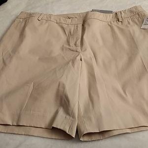 Talbot's plus size shorts 22WP